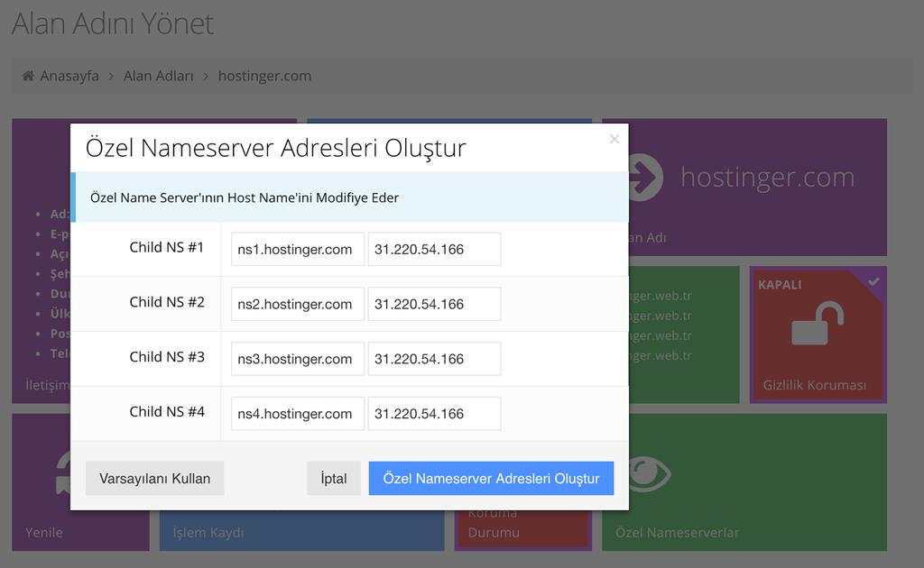 hostinger özel nameserver