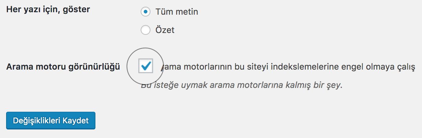 WordPress Arama Motoru Görünürlüğü