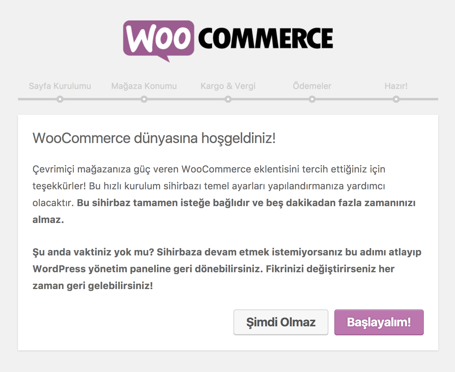 wordpress e-ticaret woocommerce karşılama