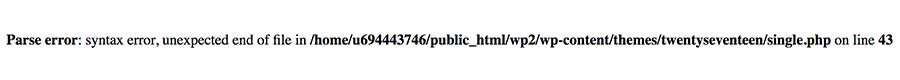WordPress Syntax Error