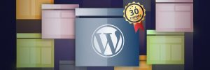 WordPress Tema - 2017'nin En İyi 30 WordPress Teması