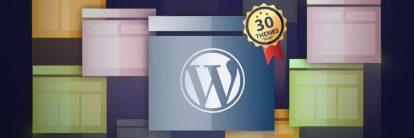 En İyi WordPress Temaları Listesi