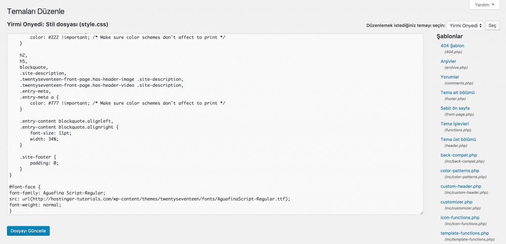 WordPress Tema CSS Dosyası Yükleme