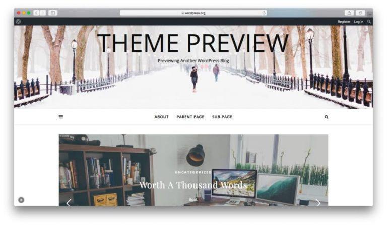 WordPress Ashe Teması