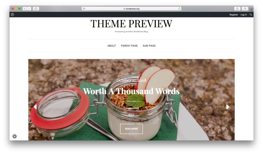 WordPress Elara Teması