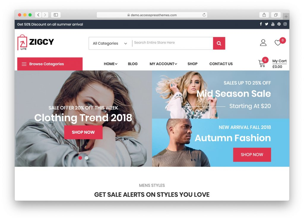 Zigcy Lite ücretsiz WordPress tema