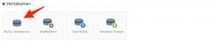 Hostinger: MySQL Veritabanları
