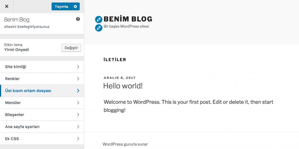 WordPress Özelleştir
