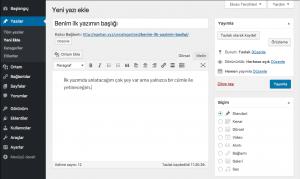 WordPress Yeni Yazı Ekleme