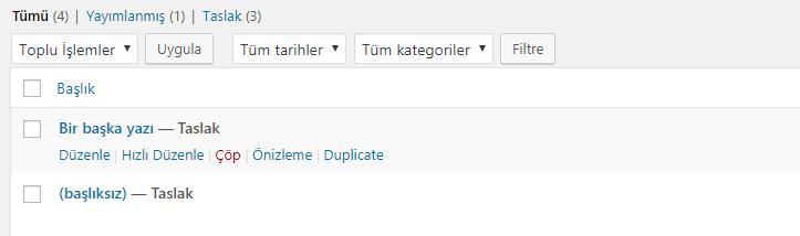 WordPress Sayfa veya Yazı Kopyalama Butonu