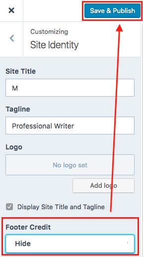 WordPress Site Kimliği Kaydet ve Yayınla