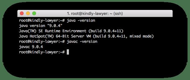 Oracle JDK ile Ubuntu 16.04 üzerinde Java kurulumu doğrulama