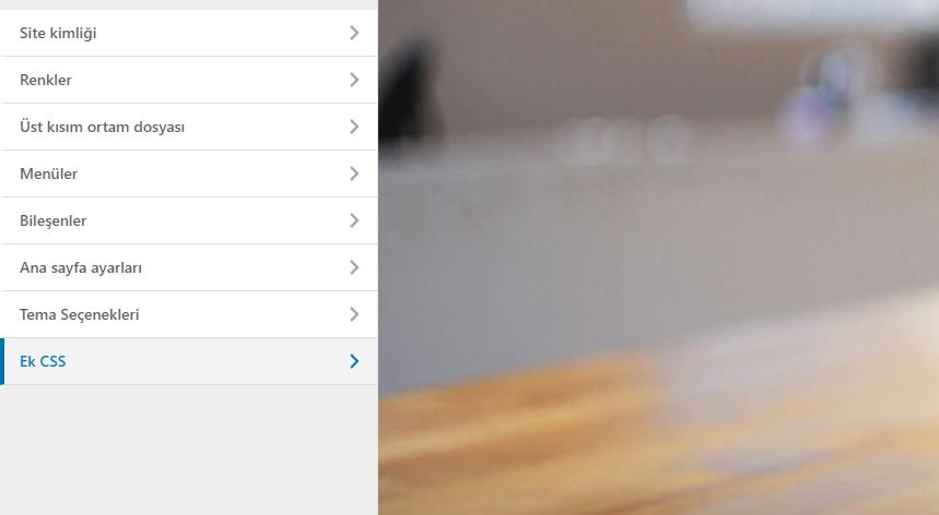 WordPress Tema Editöründe Ek CSS bölümü