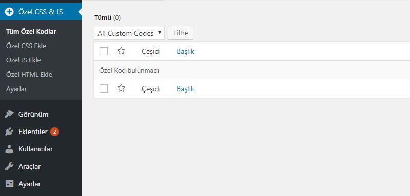 Panel aracılığıyla yeni WordPress özel CSS girdisi