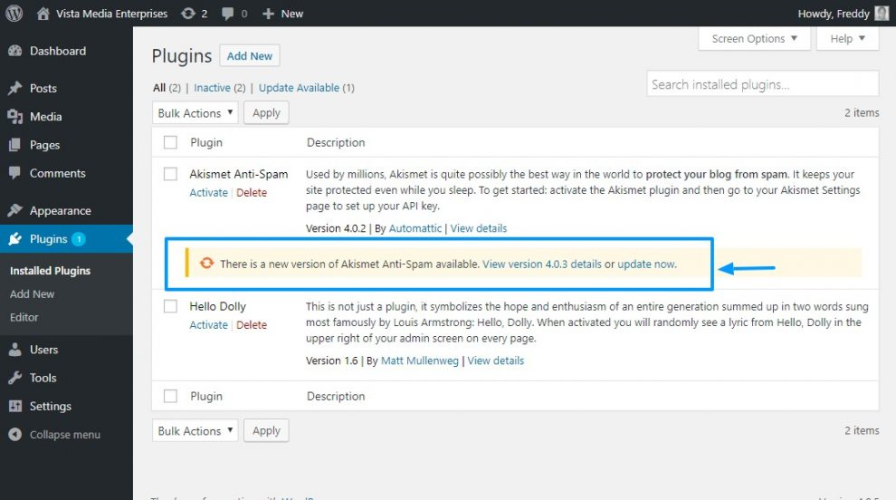 WordPress Eklenti Güncelleme