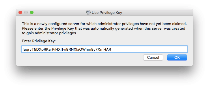 Teamspeak 3 server privileged key giriş ekranı