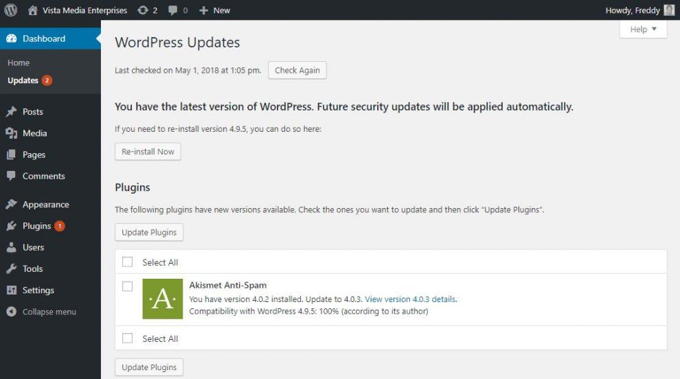 WordPress Güncellemeleri Ekranı