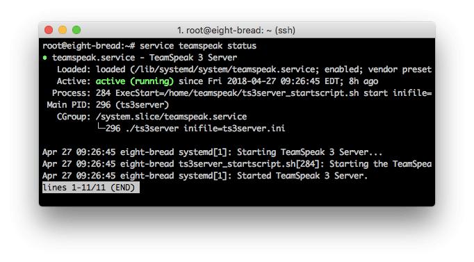 Detaylı TeamSpeak 3 server durumu