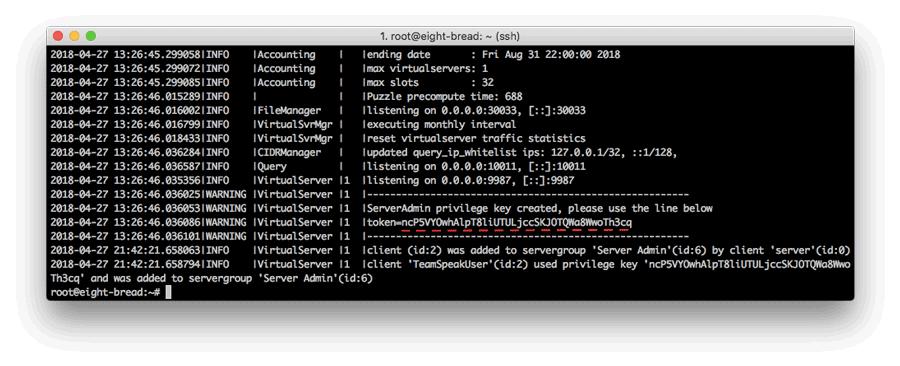 TeamSpeak 3 server privileged anahtarı