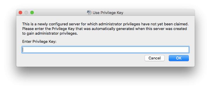 TeamSpeak 3 istemcisinde privileged key girişi