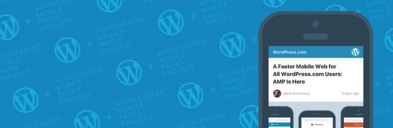 AMP for WordPress EKlenti Sayfası Görünümü