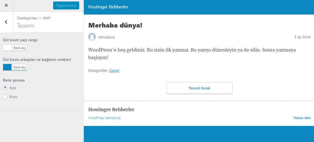 WordPress Özelleştirme Sayfası Tasarım Sekmesi