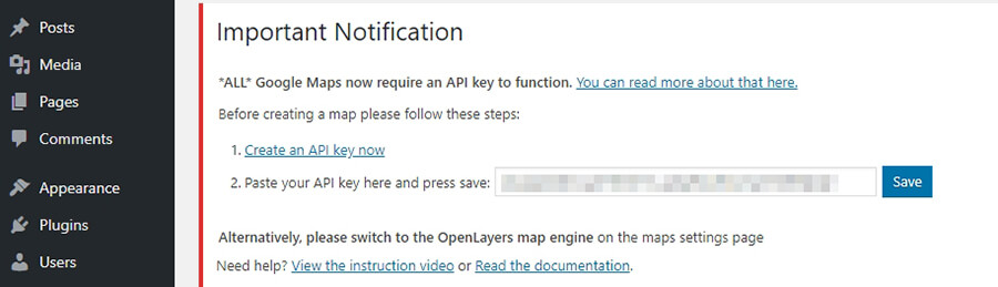 API anahtarını WordPress'e yapıştırma