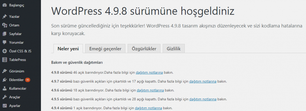 wordpress yönetici paneli