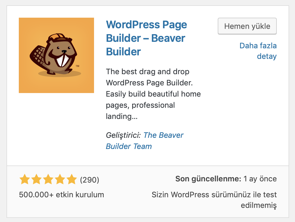 WordPress Beaver Builder eklentisi