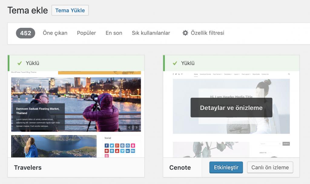 WordPress seyahat teması etkinleştirme