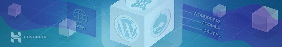 Web sitesi kuracağınız platformu belirleme