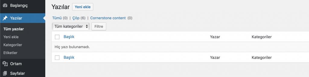 WordPress yazılar bölümü görünümü