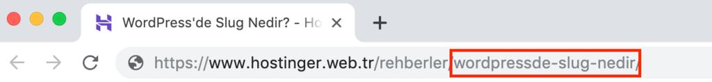 WordPress'de slug örneği.