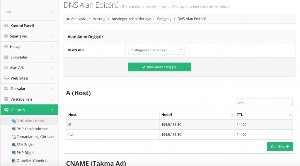 DNS Nedir: Hostinger'ın DNS Alan Editör sekmesi