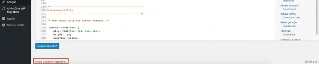 WordPress tema düzenleme sonucu
