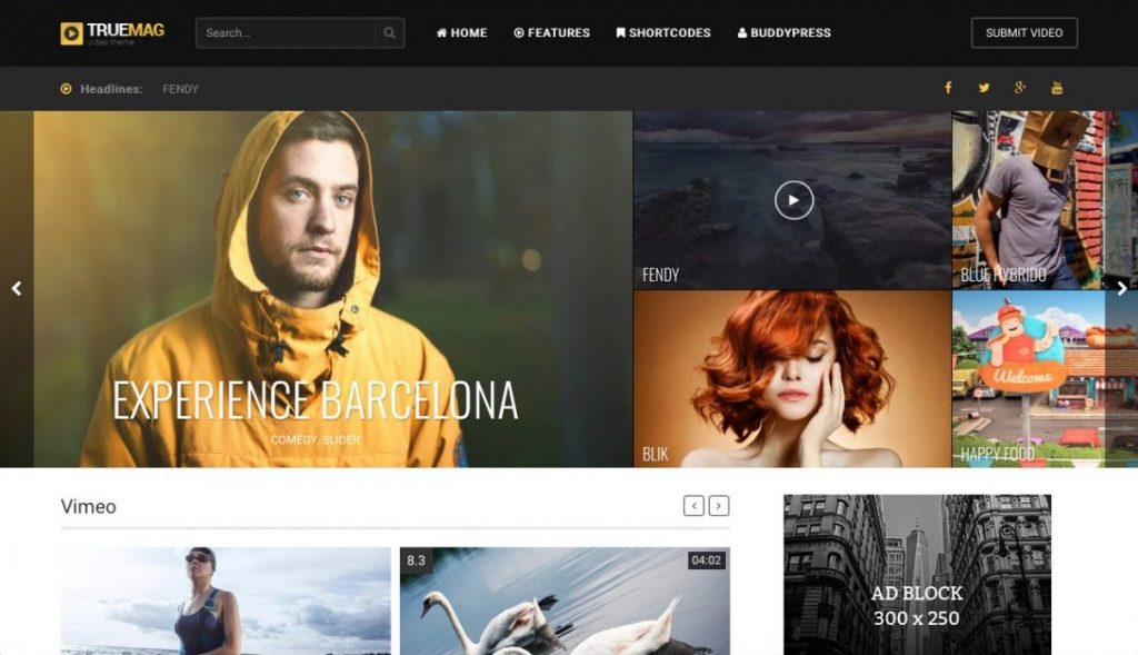 True Mag WordPress Video Teması