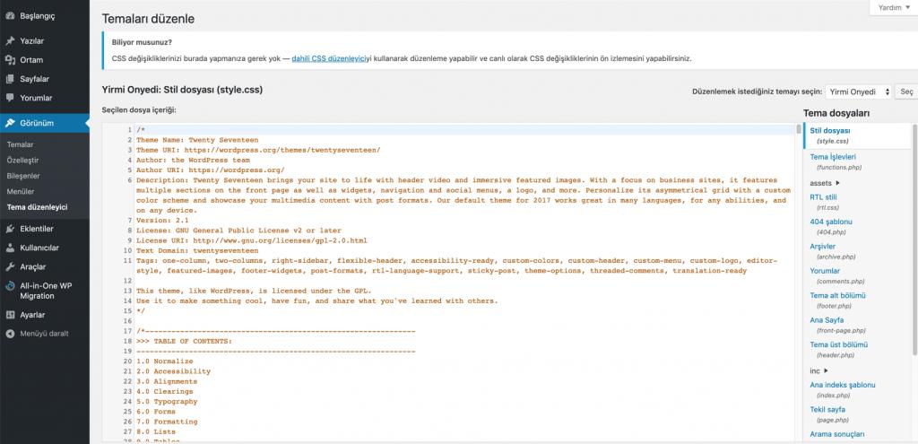 WordPress Tema Düzenleme Arayüzü