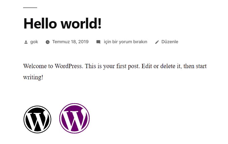 WordPress ikon yazı tipi önizlemesi