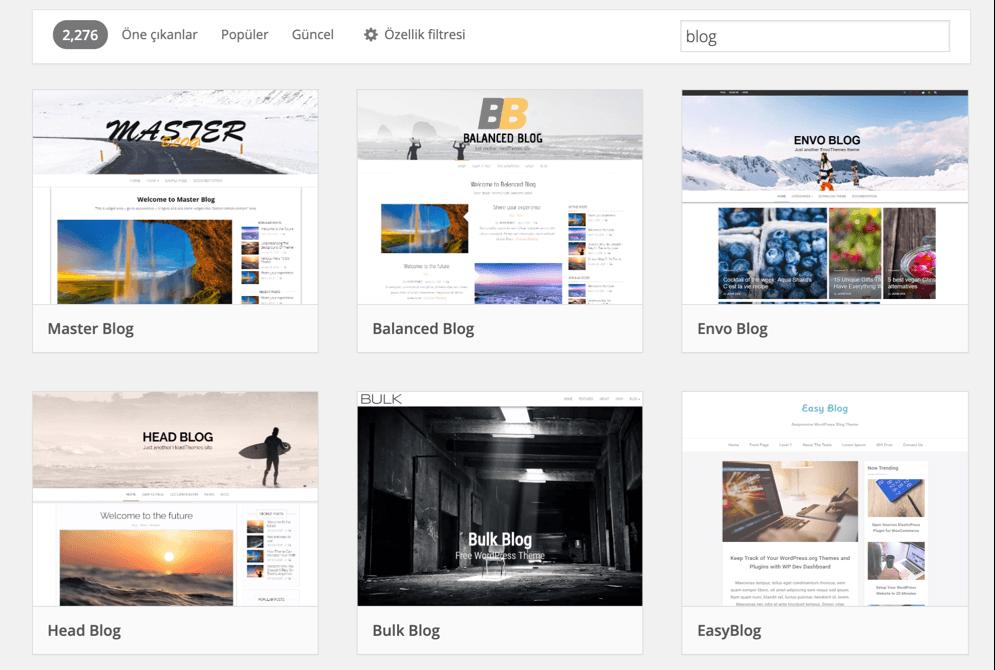 WordPress web site temaları