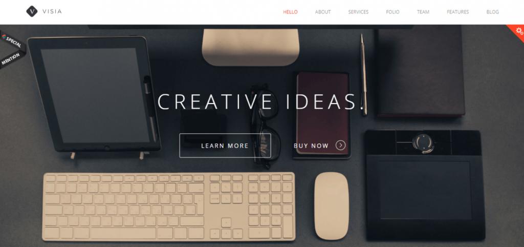 Visia WordPress teması