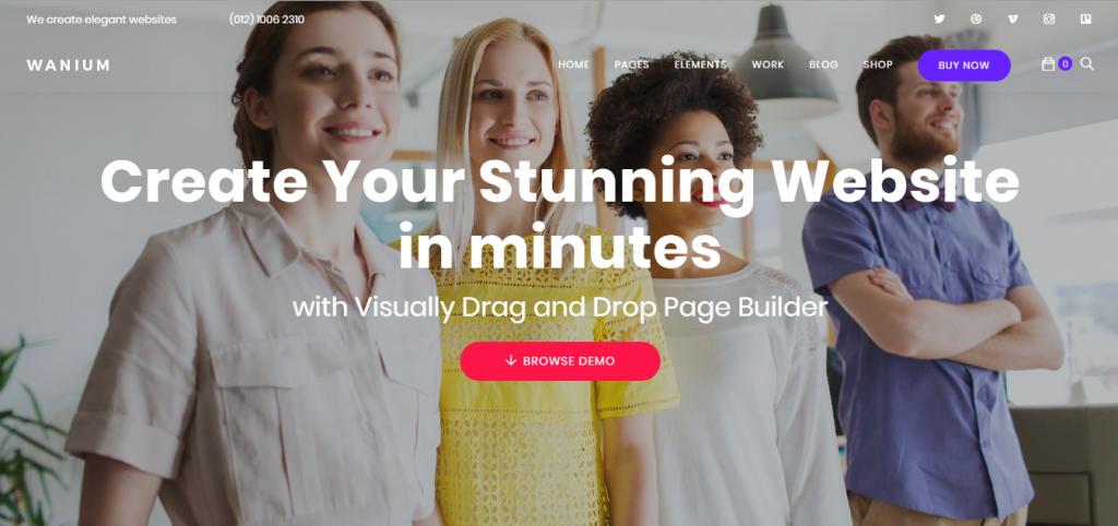 Wanium WordPress teması giriş sayfası