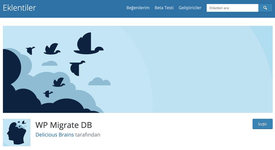 WP Migrate DB WordPress site taşıma eklentisi