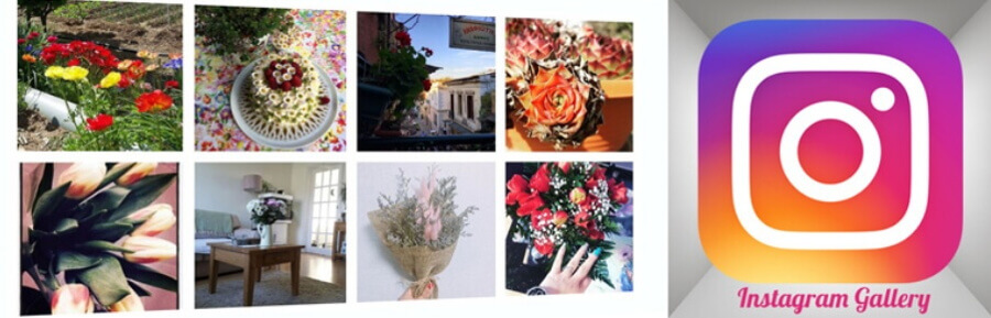 Instagram Gallery eklentisi.