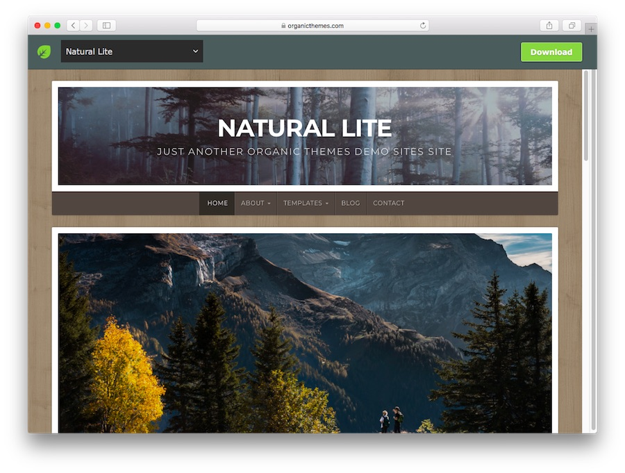Natural Lite tema demosu