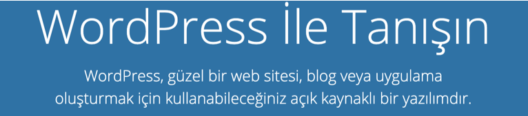 WordPress ana sayfası.