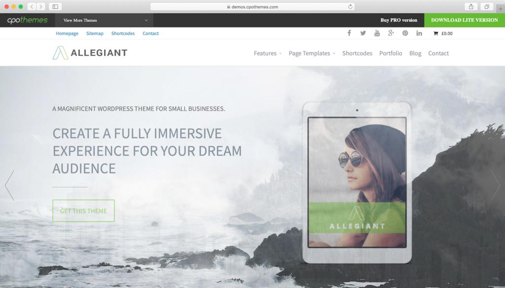 Allegiant WordPress teması