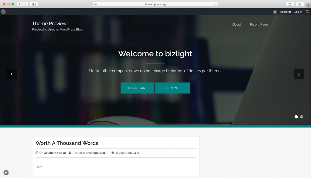 Bizlight WordPress tema