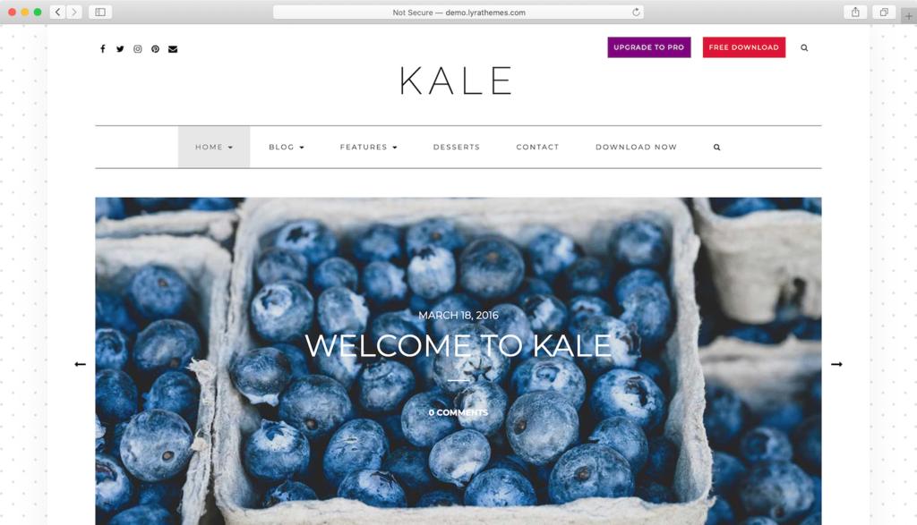 Kale WordPress Teması