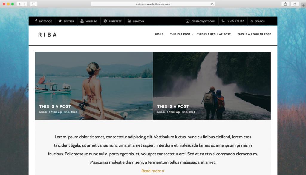 WordPress Riba Lite Teması