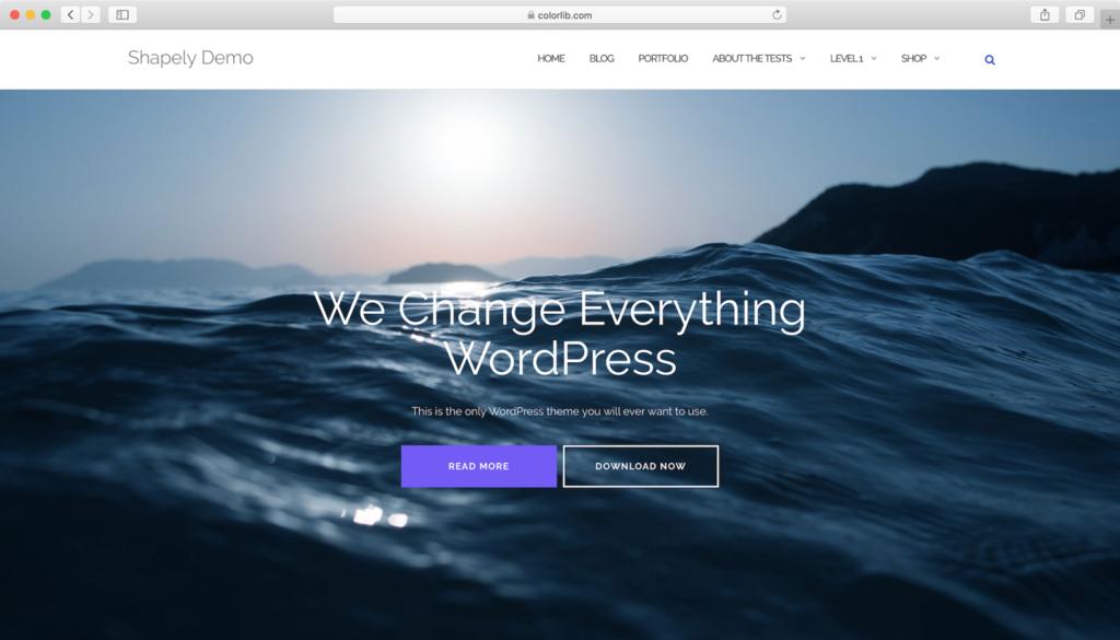 Shapely WordPress teması